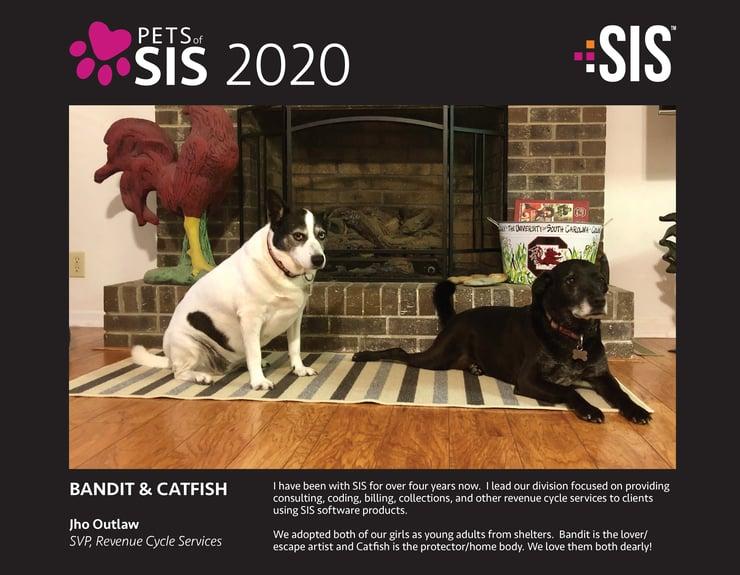 2019 2020 Pets of SIS