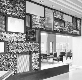 living-wall-lobby-999227-edited
